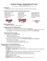 anatomy term 2 review 13 Page 2 anatomy • the art of separating the parts of an organism in order to ascertain their position  page 13  endocrine-directing long-term changes in.