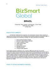 MGMT 80 (Brazil Entry Strategy)