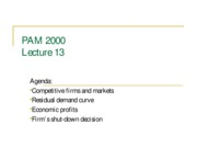 PAM_2000_Spring_2009_Lecture_13