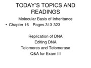 19-Repilcation of DNA