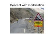 1-Descent with Modification