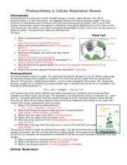 Photosynthesis-Worksheet - Name Date Period Photosynthesis Making ...