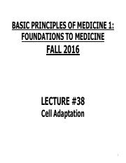 FTM Lecture 38 Cell Adaptation