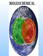 L3_Biogeochemical_Cycles.ppt