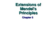 Extensions of Mendel's Principles Lecture 9 and 10