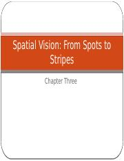 03_Chapter 3_Spatial Vision_Student.pptx