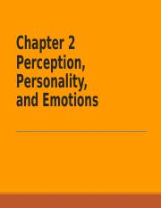 Chapter 2 Perception, Personality, and Emotions - online.ppt
