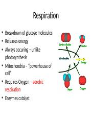 Chapter 10 - Respiration
