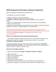SPSS Descriptive Analyses Assignment.pdf
