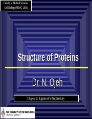 08.29-9-2011 Protein Structure.ppt