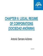 Chapter 6 The legal regime of corporations (sociedad anónima)
