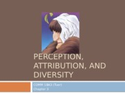 3 PERCEPTION,+ATTRIBUTION,+AND+DIVERSITY.pptx