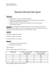 Natural selection lab report.docx