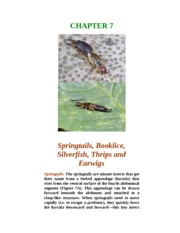Chapter 7-Springtails, Silverfish, Booklice and Others