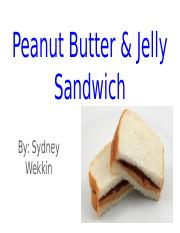 Peanut Butter & Jelly Sandwich