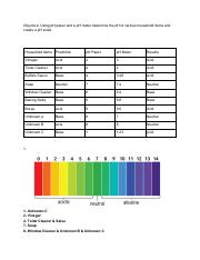 pH of Common Household Items.pdf