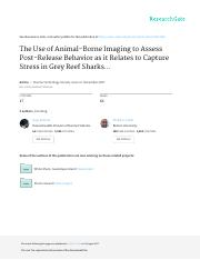 Paper 1 Post Release Grey Reef Sharks.pdf