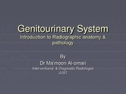 15 - Genitourinary System