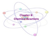 Chapter 8 Lecture Notes - Ionic Reactions