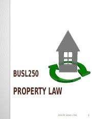 Lecture 12 final Property Intellectual Property