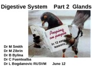 21_Digestive_System_Part_Two_Spring_2013 (1)