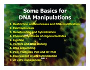 Day_2_-_DNA_manipulation