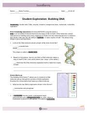 Building DNA Gizmo.pdf - Name_ALEXA MO_NSALVE Date_04 02 ...
