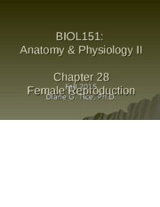 Chapter 28 - Female Reproduction.ppt