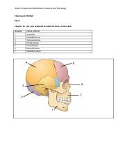 AP_wk5_assignment_worksheet_V02