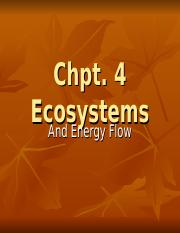 Ch 4 Ecosystems
