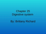 Digestive Lecture Slides