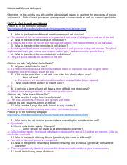 Mitosis & Meiosis Webquest Key - Mitosis and Meiosis ...