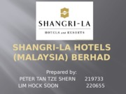 strategic plan of shangri la hotel Palace, a successful 4 -star hotel in a large city shangri - la atlantic sheraton italia alexander iv airport plaza castle grand regency internal strategy, plan, policy internal capability strategic service vision target market segments.