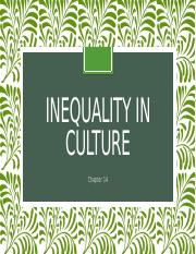 14.Inequality in culture.pptx
