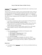 Essay 1 instructions SU17(1).docx