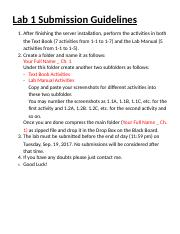 Lab 1 Submission Guidelines(3).docx