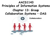 Chapter 13 Group Collaboration Systems - OAS - Students 201516