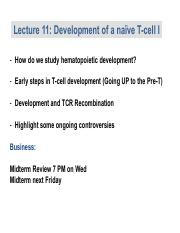 Lecture 11 Naive T cell develop.pdf