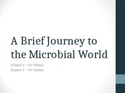 Chapter 2 - A Brief Journey to the Microbial World-2.ppt
