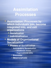 Assimilation Processes 2009