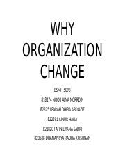 WHY ORGANIZATION CHANGE.pptx