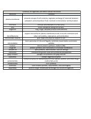 summary or organelles and other cellular structures.pdf