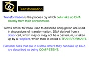 Chapter 6 - Transformation