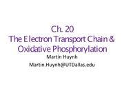 3. Electron Transport - Review