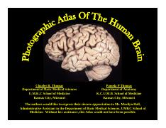 Photographic Atlas of the Human Brain.pdf