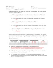 Mendel Worksheet
