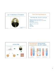 genetics lab report discussion