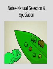 Notes- Natural Selection and Speciation.ppt