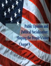 Chapter 06 - Public Opinion.pptx