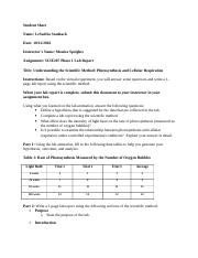 SCIE207_Lab1_worksheet_REV.doc